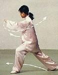 四十二式太极拳 拳谱 图谱  - 墨剑居士 - 雪竹的博客